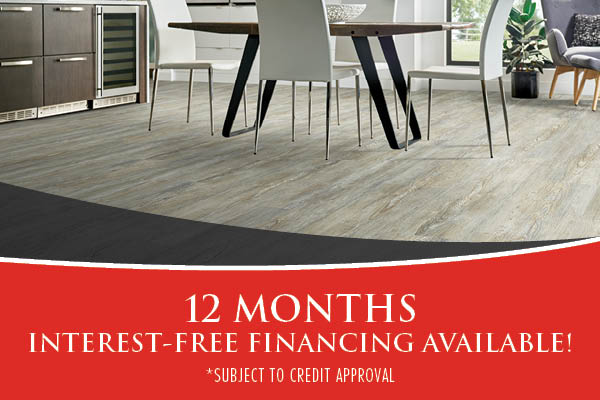 12 Months Interest Free Financing During March